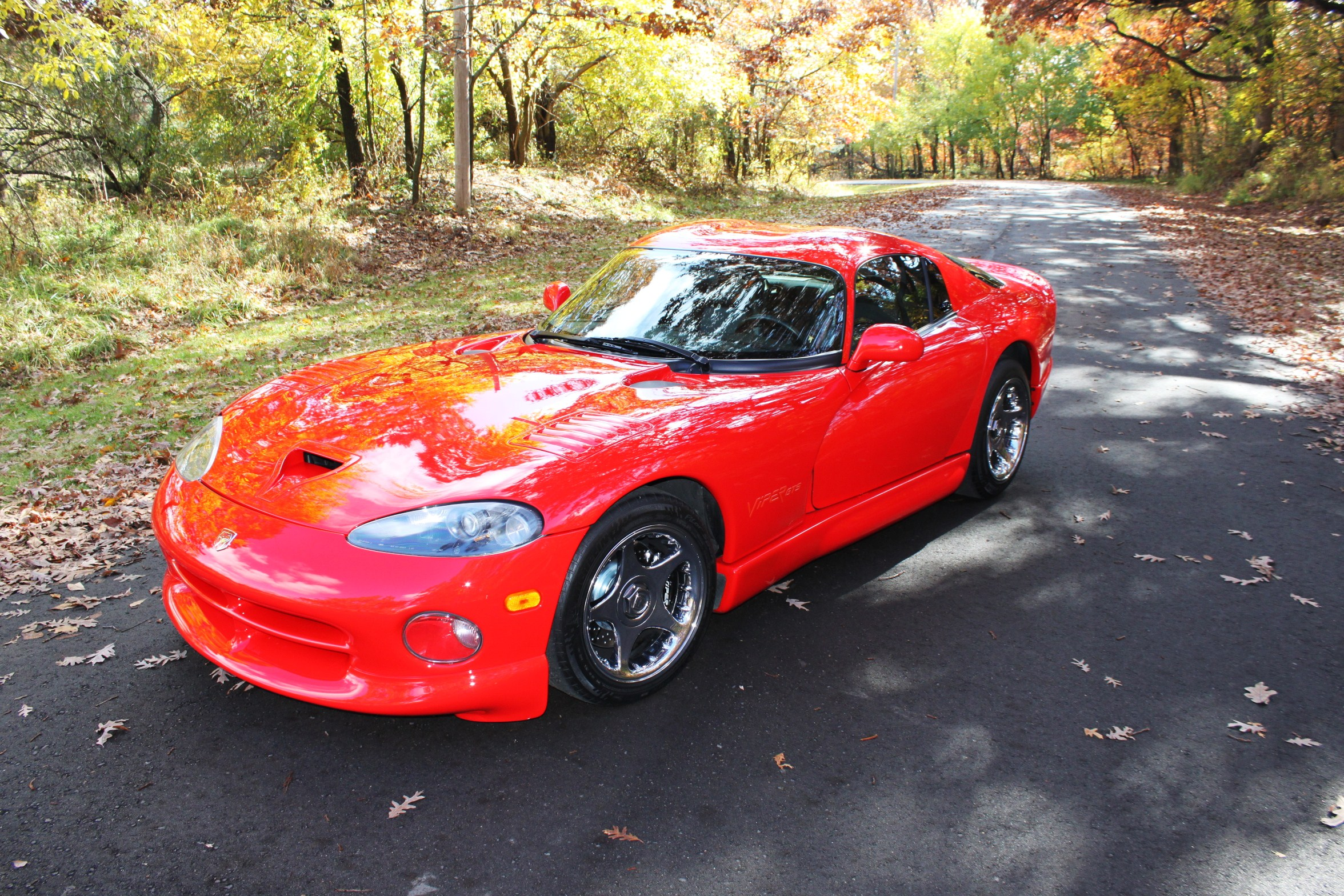 Click image for larger version  Name:Viper 2.JPG Views:131 Size:1.24 MB ID:102625